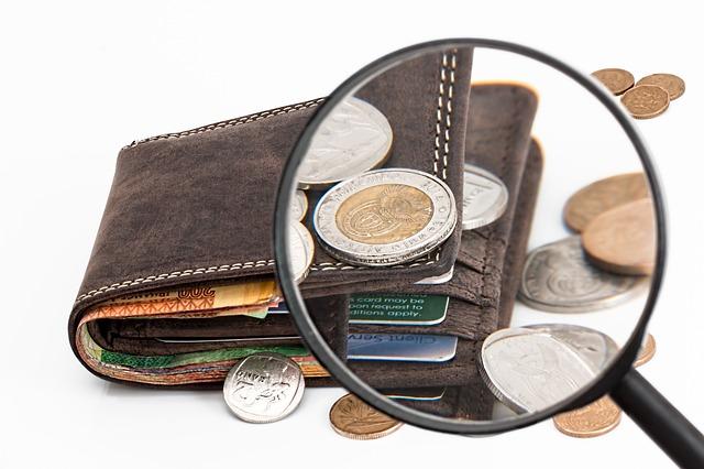 חקירה כלכלית של רשות המיסים